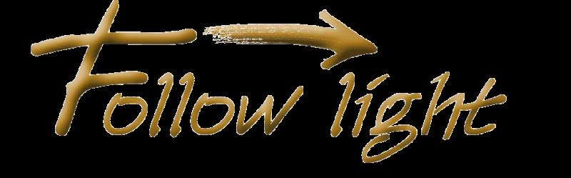 Hundef-hrgeschirr-Follow-Light-Logo-frei